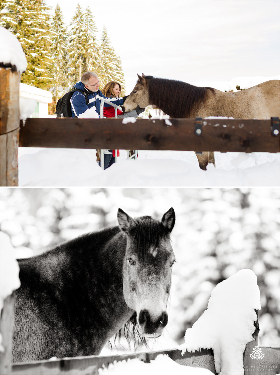 sleigh ride with horses at st. anton am arlberg - Blog of Nina Hintringer Photography - Wedding Photography, Wedding Reportage and Destination Weddings