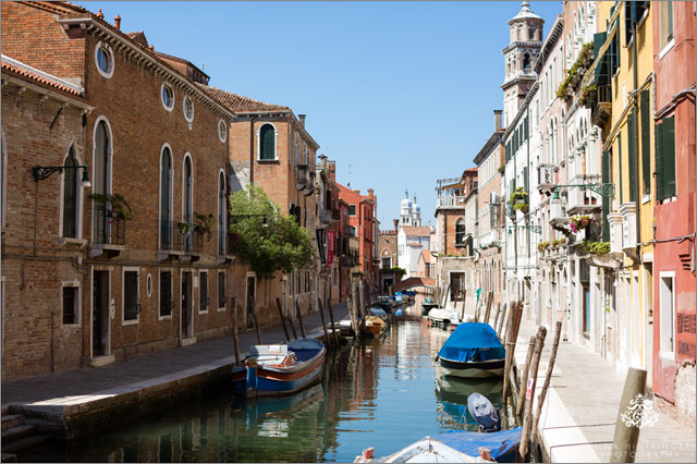 View all posts of Venedig